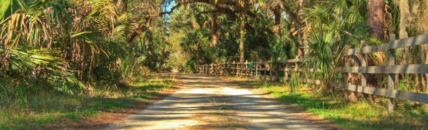 St Johns River Road
