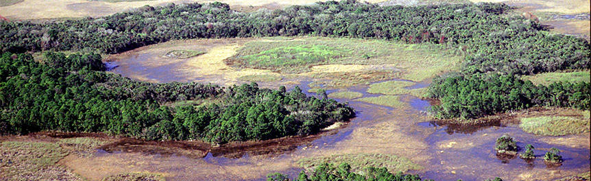 Picture: Aerial View of OK Slough