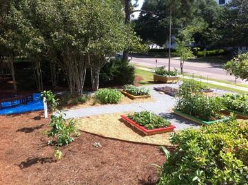 Photo: Fresh for Florida Kids Garden