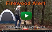 Watch the Firewood Alert Video